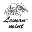 Unicream pasta narghilea - Lemon Mint